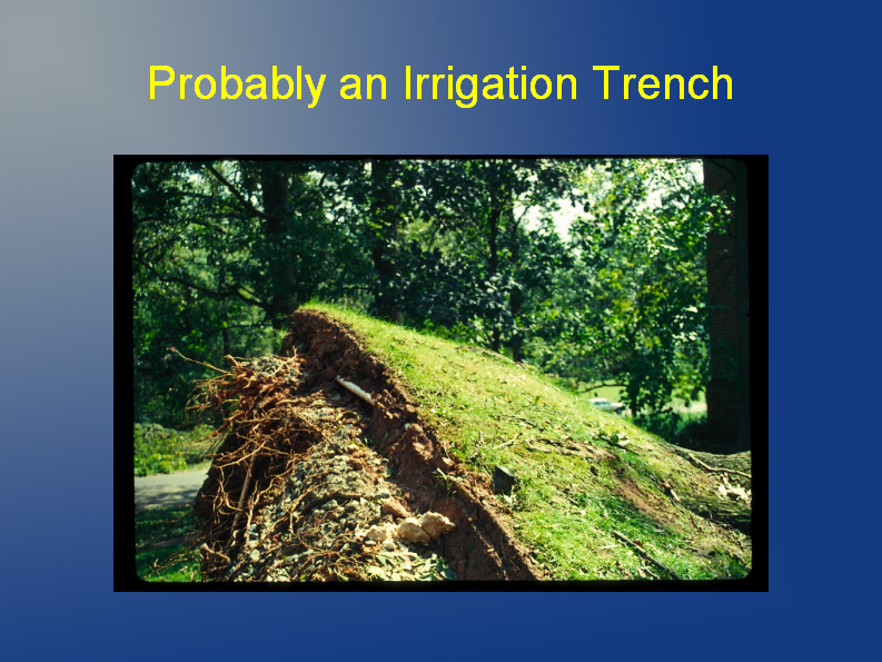 probably an irrigation trench